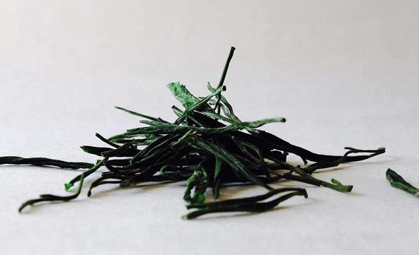 Conheça Os Principais Benefícios Atribuidos à L Teanina, Vinda Principalmente Do Chá Camellia Sinensis