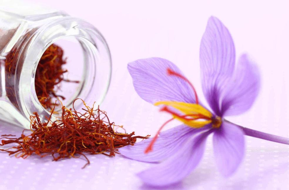 Flor De Açafrão De Nome CientíficoCrocus Sativus L E Estigmas Secos Para Fazer Chá