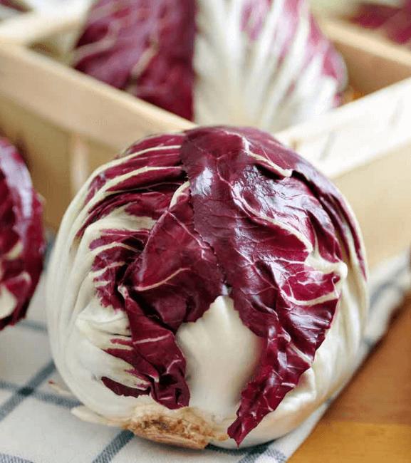 Radicchio: O Vegetal com+ de 30 Benefícios Incríveis na Saúde