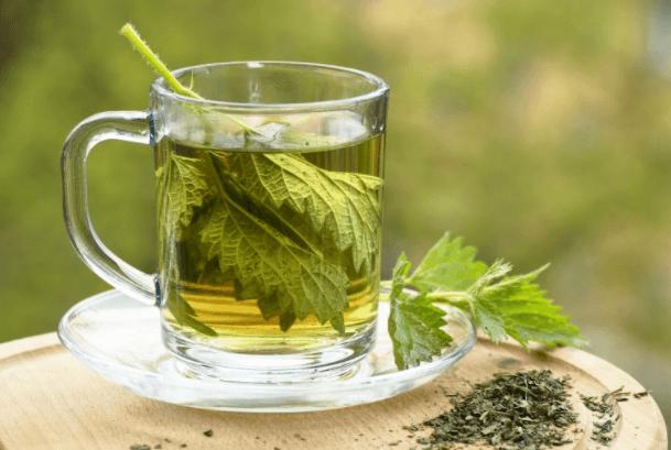 O Chá De Urtiga é Maravilhoso Para Quem Sofre De Cólicas Menstruais E TPM