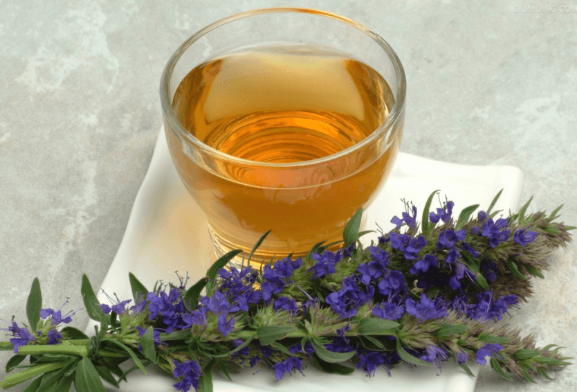 Chá De Hissopo
