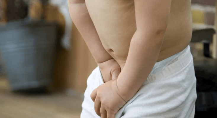 Escroto: o que é, função e doenças que afetam o saco escrotal